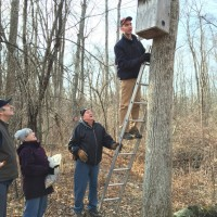 checking for wood ducks at DKNP 2015